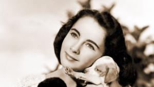 Elizabeth Taylor Widescreen