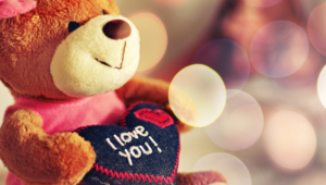 I Love You Teddy Bear