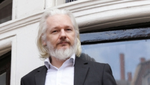 Julian Assange Hd Desktop