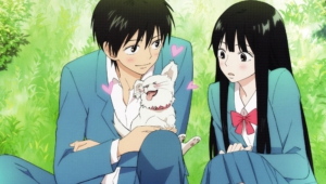 Kimi Ni Todoke For Desktop