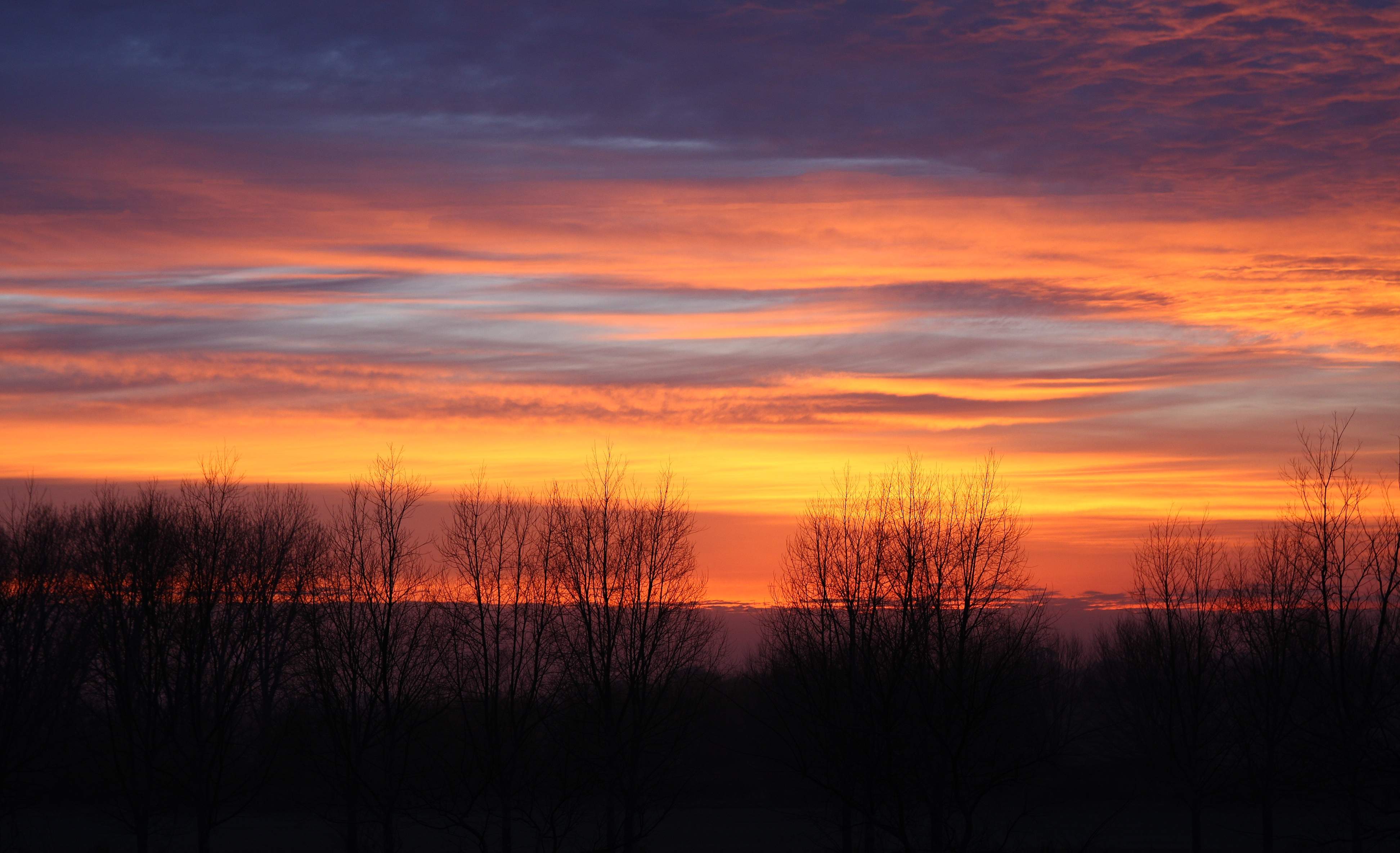 Beautiful Morning wallpaper | 1280x1024 | #29371