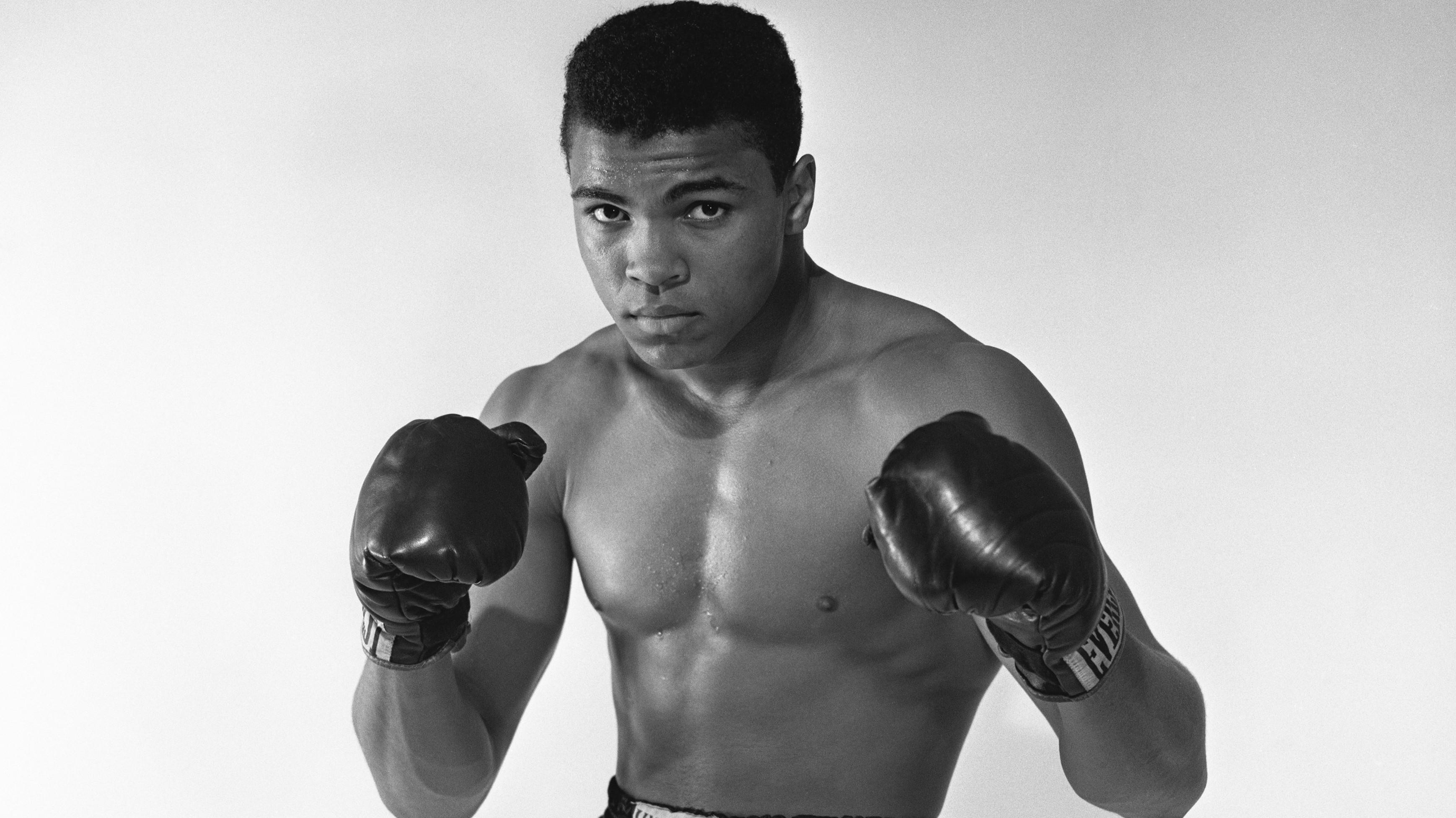 Bilder Muhammad Ali