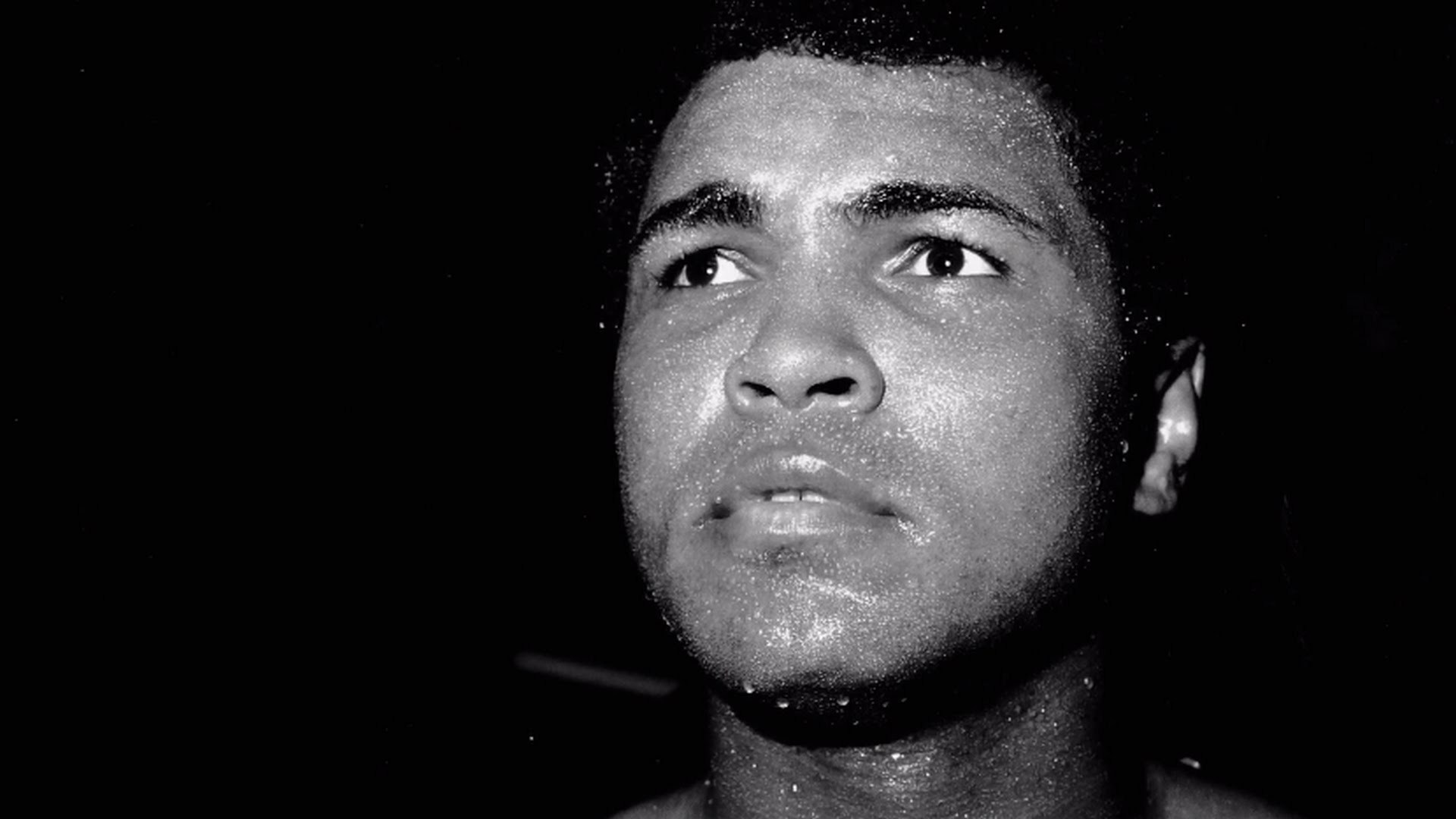 muhammad ali Muhammad ali boxer : b 1942 - 2016 if i thought going to war would bring  freedom and equality to twenty-two million of my people, they wouldn't have to  draft.