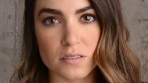Nikki Reed High Definition