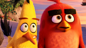 Pictures Of Angry Birds