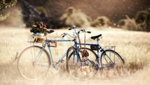 Pictures Of Bicycle