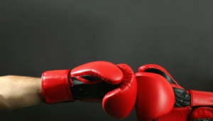 Pictures Of Boxing Gloves