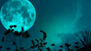 Pictures Of Night Sky Moon