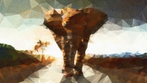 Pictures Of Polygon Elephant