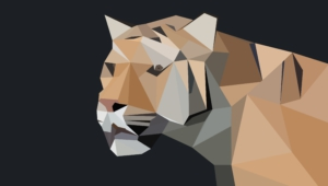 Pictures Of Polygon Tiger