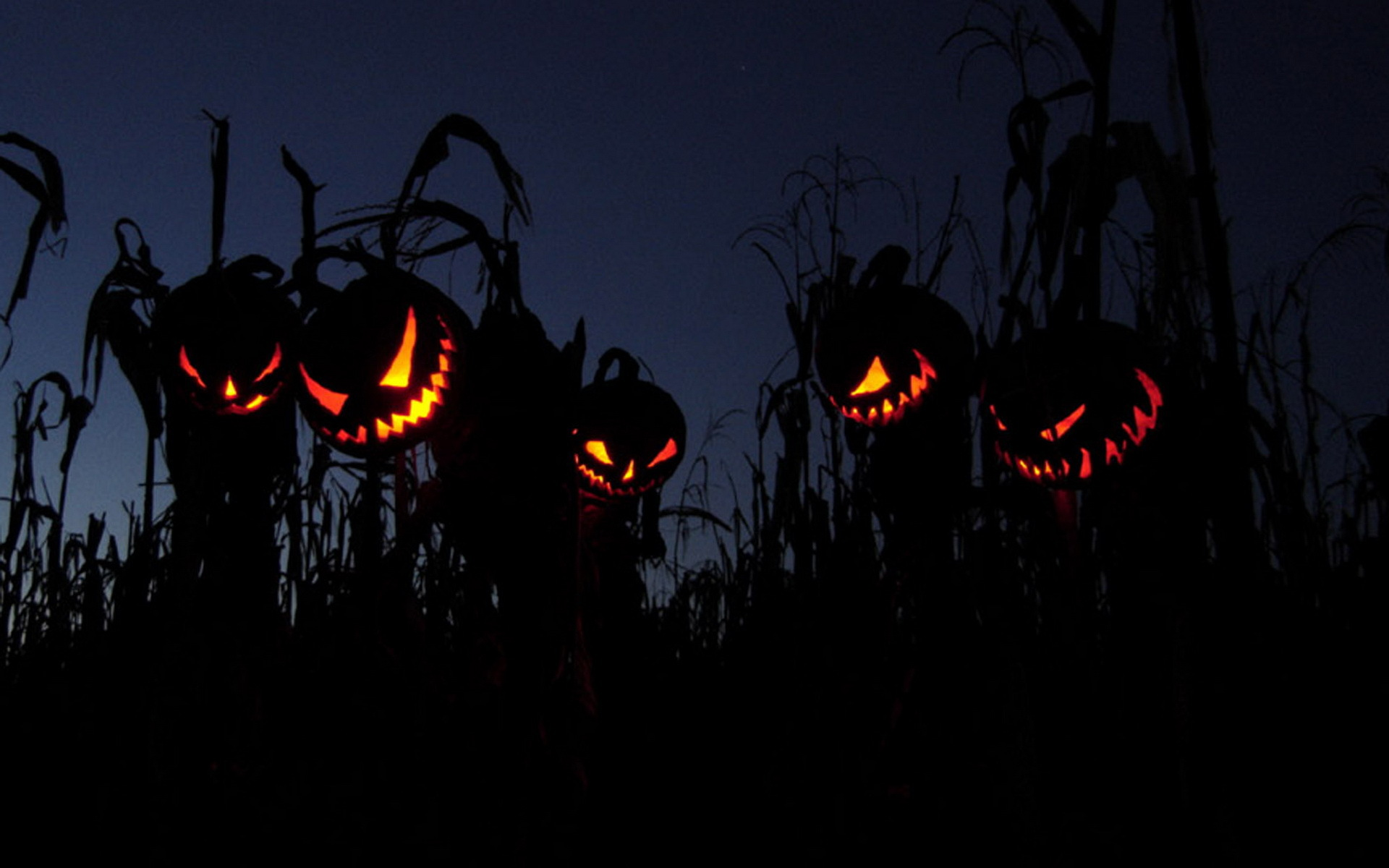 Scary halloween wallpapers images photos pictures backgrounds - Scary halloween pumpkin wallpaper ...