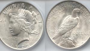 Silver Dollar Desktop