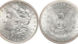 Silver Dollar For Desktop