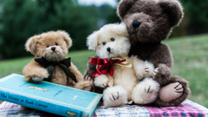 Teddy Bear Wallpapers Hd