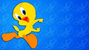 Tweety Photos