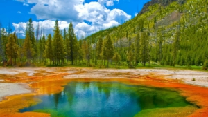 Yellowstone National Park Hd Desktop