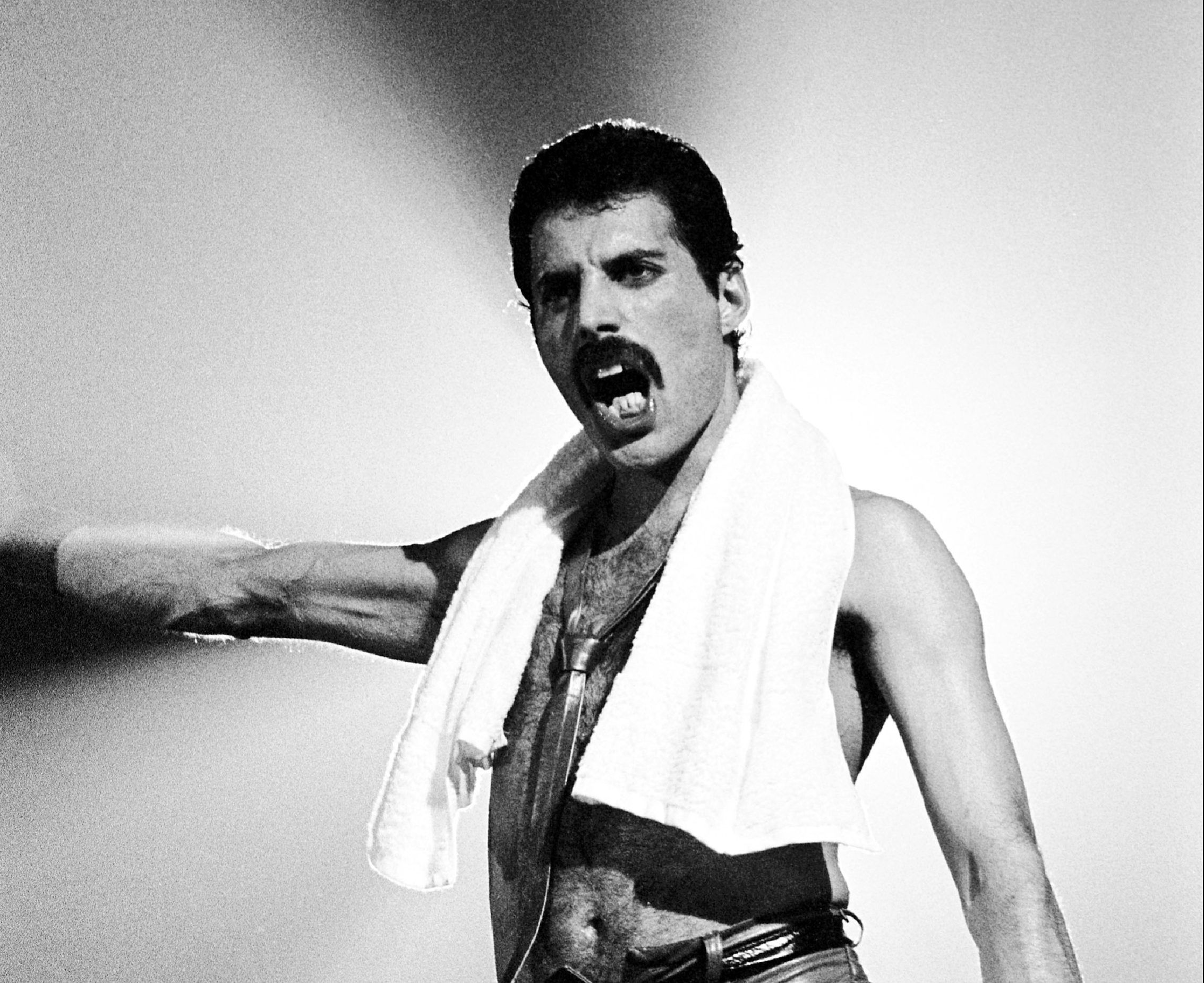 freddie mercury - photo #36