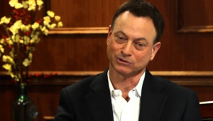 Gary Sinise Hd Wallpaper