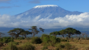 Mountain Kilimanjaro Pictures
