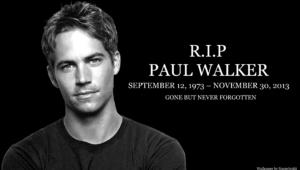 Paul Walker For Desktop