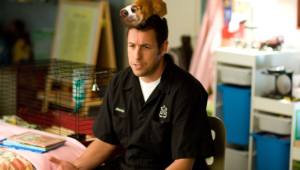 Adam Sandler High Definition Wallpapers