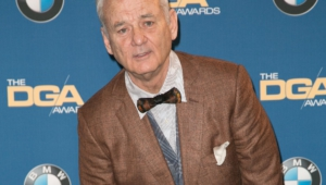 Bill Murray Hd Desktop