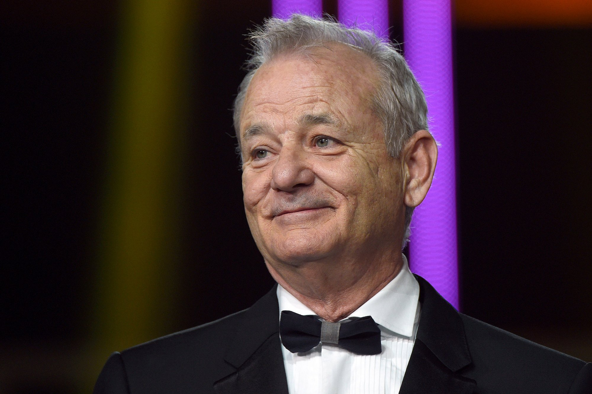 bill murray hd wallpaper - photo #1