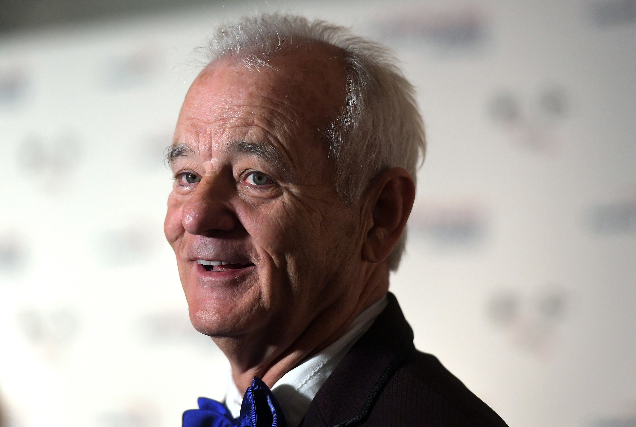 bill murray hd wallpaper - photo #43