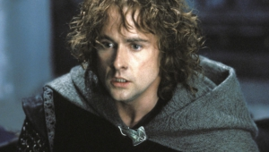 Billy Boyd Widescreen