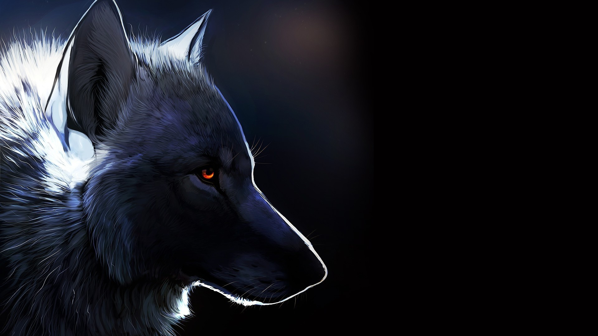 black wolf computer wallpapers - photo #5