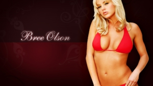 Bree Olson Wallpaper