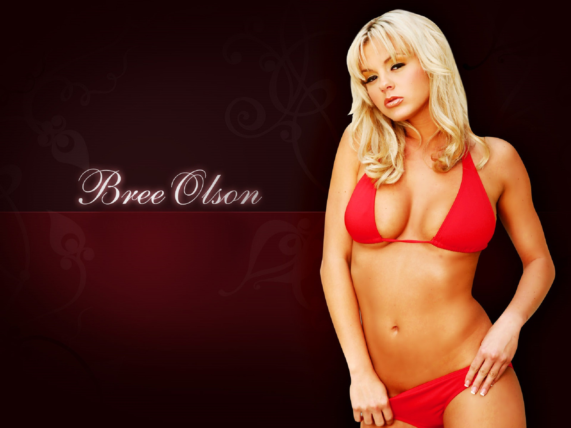 That's how bree olson big boobs