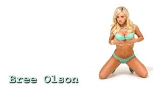 Bree Olson Wallpapers Hd