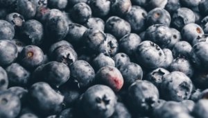 Blueberries Widescreen