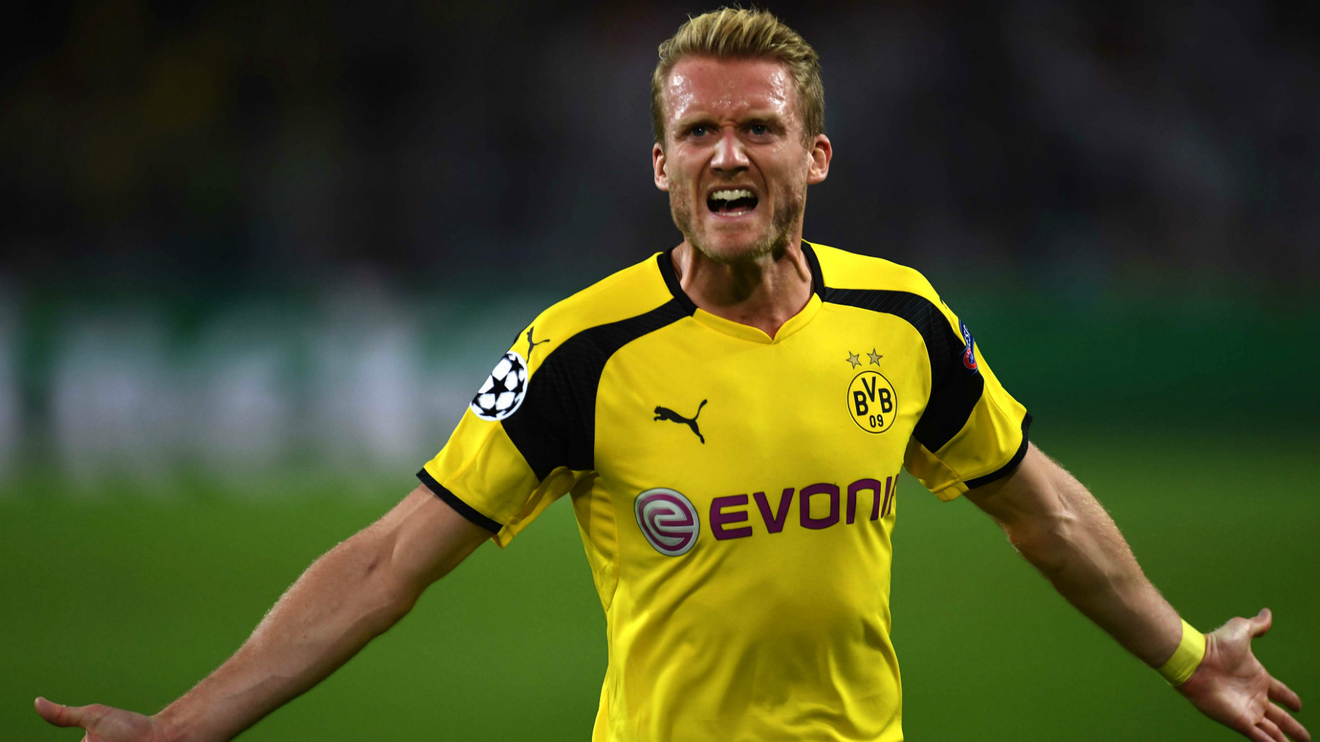 Borussia Dortmund Wallpapers Images Photos Pictures