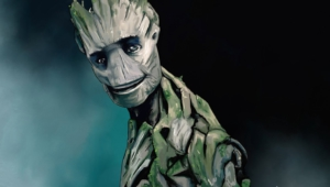 Groot Photos