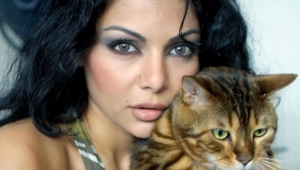 Haifa Wehbe Full Hd