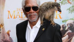 Morgan Freeman For Desktop