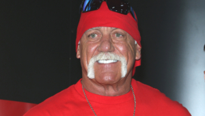 Pictures Of Hulk Hogan
