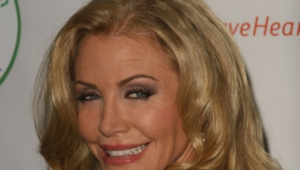 Shannon Tweed Wallpaper