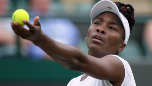 Venus Williams Wallpapers Hd