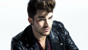 Adam Lambert Desktop