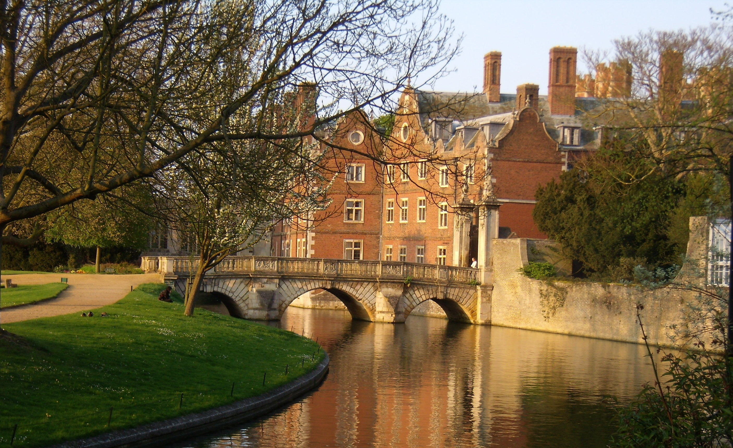 download the cambridge introduction to literature and