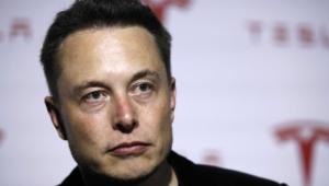 Elon Musk For Desktop
