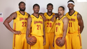 Fort Wayne Mad Ants Pictures