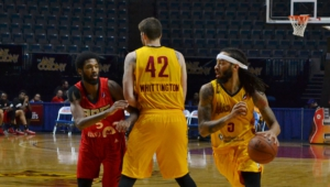 Fort Wayne Mad Ants Wallpapers