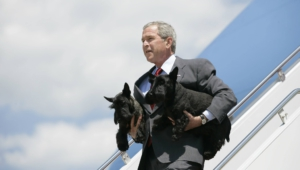 George Bush High Quality Wallpapers