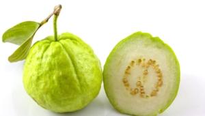 Guava Wallpaper