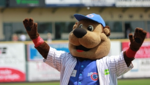Iowa Cubs Wallpaper