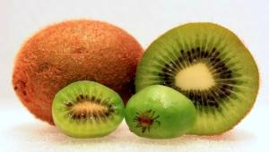 Kiwi Images